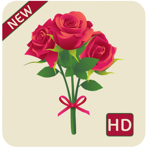 Download Rose Hd Wallpapers 1080p 168apk Android Application